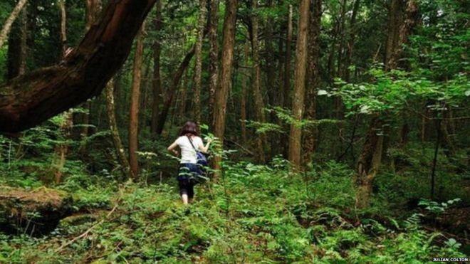 सदस्यता नपाउँदा वन छेउमै रहेका मुक्त हलियाले पैदावार उपभोग गर्न पाएनन्