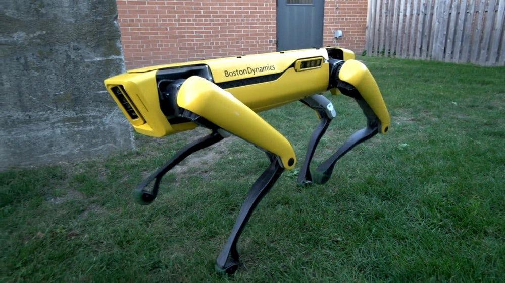 मालिकका लागि ढोका खोलिदिन्छ यो रोबोटले (भिडियो)