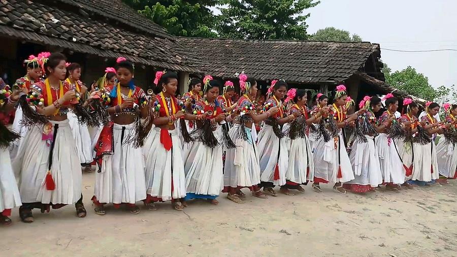 थारु समुदायको अटूट आस्था र विश्वास छ सखिया नृत्यमा