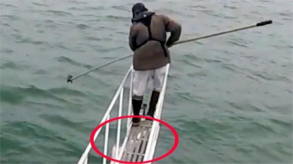 माछा मार्न गएका व्यक्तिलाई आक्रमण गर्यो शार्कले, भिडियो भाइरल