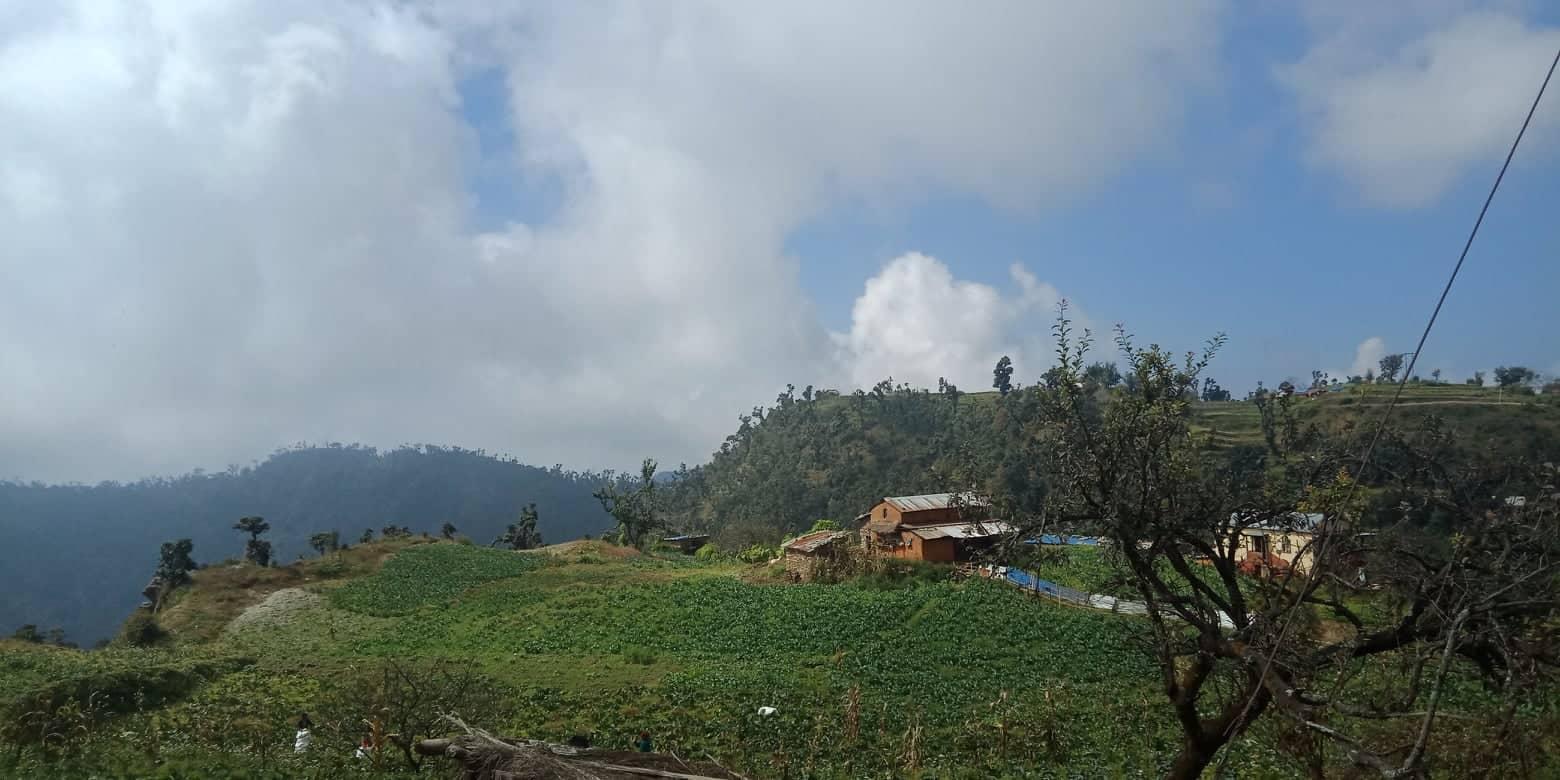 गाउँ नै तरकारीमय, हरेक किसानकोवार्षिक आम्दानी तीन लाख भन्दाबढी
