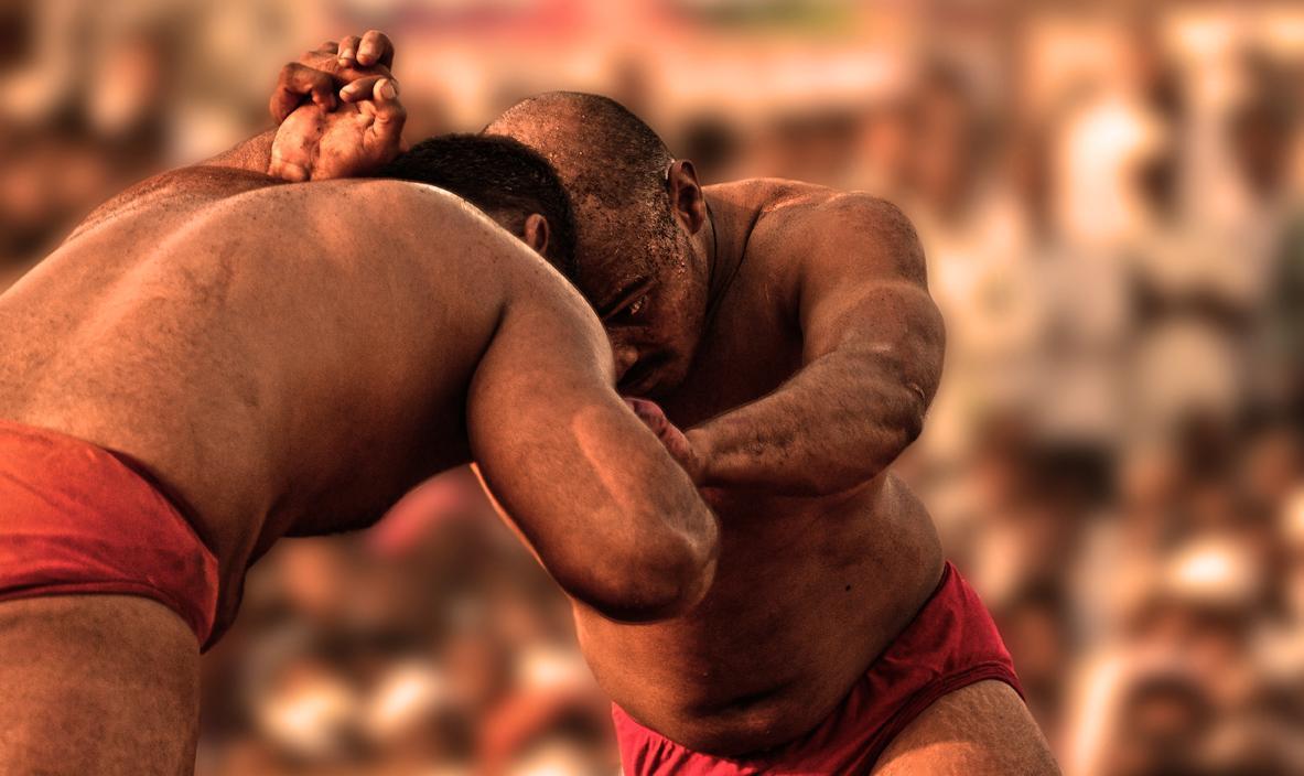 कुस्तीमा नेपाल र भारतका आठ पहलवान विजयी