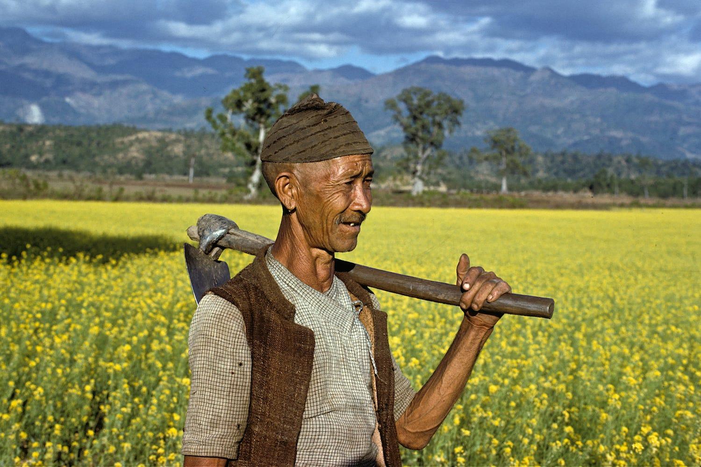 किसान मख्ख पार्ने योजना :अनलाइनबाटै अनुदानदेखि कृषिमा यान्त्रिकरणसम्म
