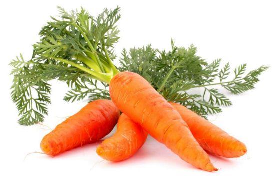 अल्सरदेखि कोलेस्ट्रोल नियन्त्रण, यस्ता छन् गाजरका औषधीय गुण
