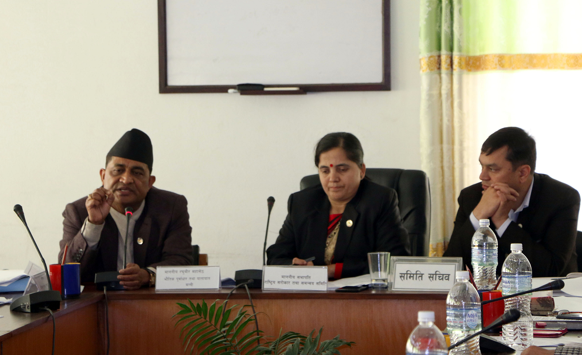 राष्ट्रिय गौरवका आयोजनाको प्रगति बुझ्न समितिले खटायो १३ सदस्य