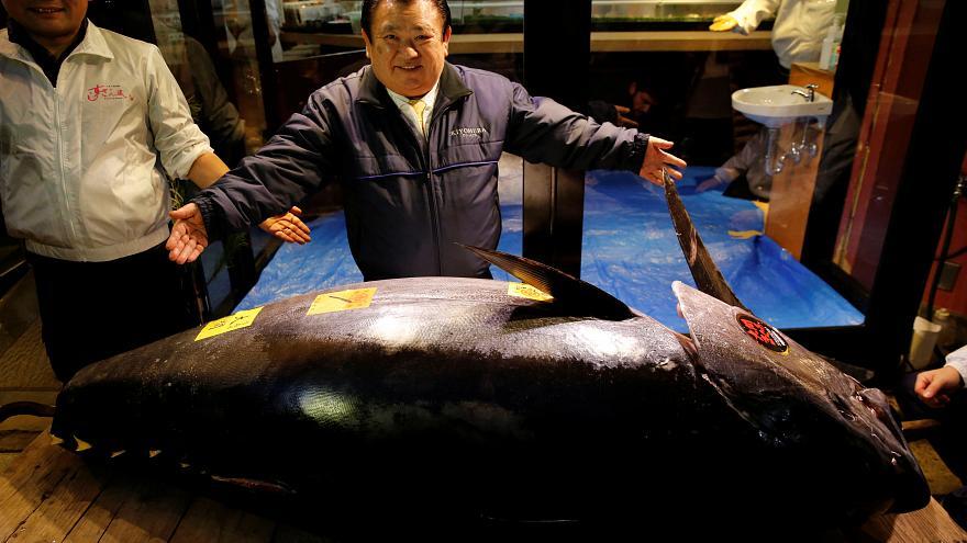 जापानमा एउटै माछा ३४ करोडमा बिक्यो