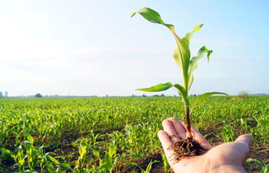 'स्मार्ट कृषि गाउँ' कार्यक्रमले कृषकमा उत्साह थप्याे